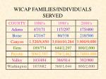 wicap families individuals served