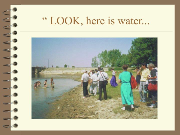 """ LOOK, here is water..."