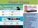 fiverr clone