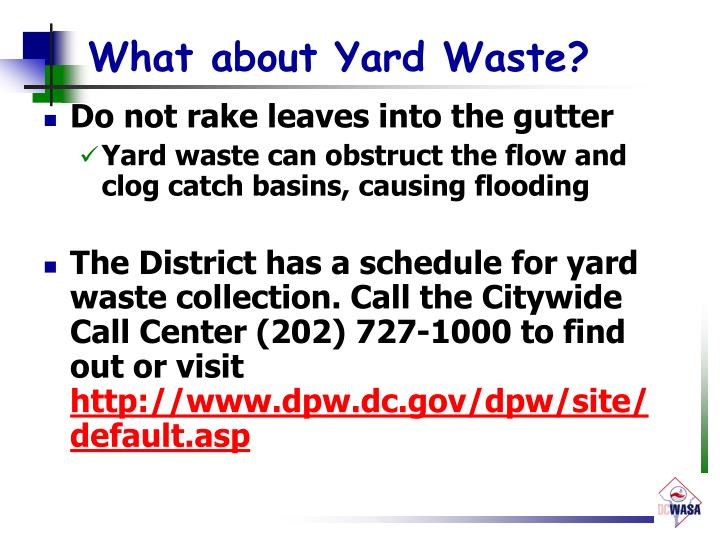 What about Yard Waste?