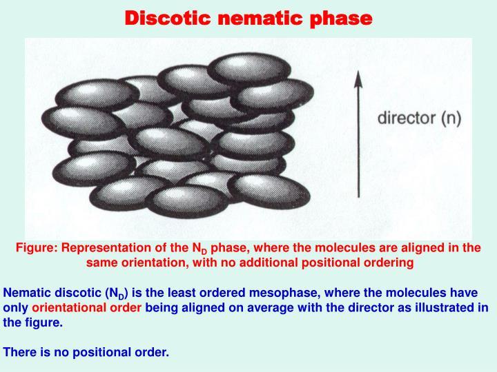 Discotic nematic phase