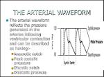 the arterial waveform