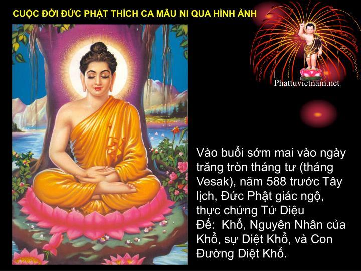 Vào buổi sớm mai vào ngày trăng tròn tháng tư (tháng Vesak), năm 588 trước Tây lịch, Đức Phật giác ngộ, thực chứng Tứ Diệu Đế: Khổ, Nguyên Nhân của Khổ, sự Diệt Khổ, và Con Đường Diệt Khổ.