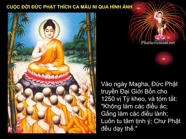 """Vào ngày Magha, Đức Phật truyền Đại Giới Bổn cho 1250 vị Tỳ kheo, và tóm tắt: """"Không làm các điều ác; Gắng làm các điều lành; Luôn tu tâm tịnh ý; Chư Phật đều dạy thế."""""""