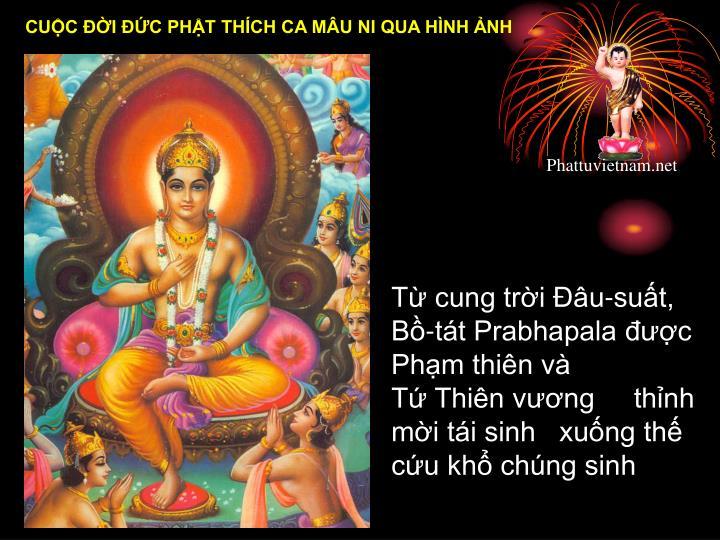 Từ cung trời Đâu-suất, Bồ-tát Prabhapala được Phạm thiên và            Tứ Thiê...