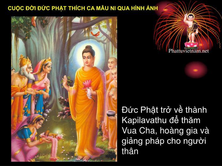 Đức Phật trở về thành Kapilavathu để thăm  Vua Cha, hoàng gia và giảng pháp cho người thân