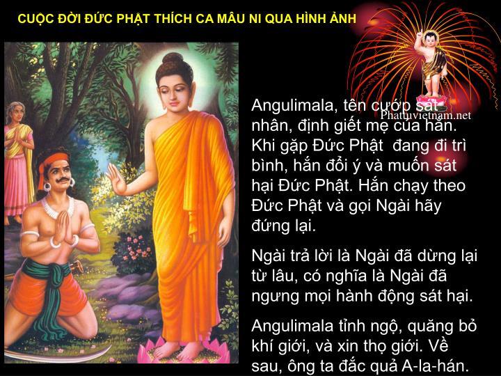 Angulimala, tên cướp sát nhân, định giết mẹ của hắn. Khi gặp Đức Phật đang đi trì bình, hắn đổi ý và muốn sát hại Đức Phật. Hắn chạy theo Đức Phật và gọi Ngài hãy đứng lại.