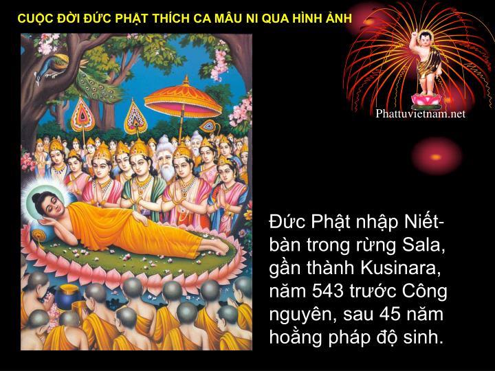 Đức Phật nhập Niết-bàn trong rừng Sala, gần thành Kusinara, năm 543 trước Công nguyên, sau 45 năm hoằng pháp độ sinh.