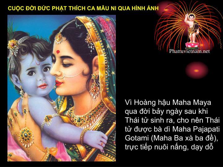 Vì Hoàng hậu Maha Maya qua đời bảy ngày sau khi Thái tử sinh ra, cho nên Thái tử được bà dì Maha Pajapati Gotami (Maha Ba xà ba đề), trực tiếp nuôi nấng, dạy dỗ