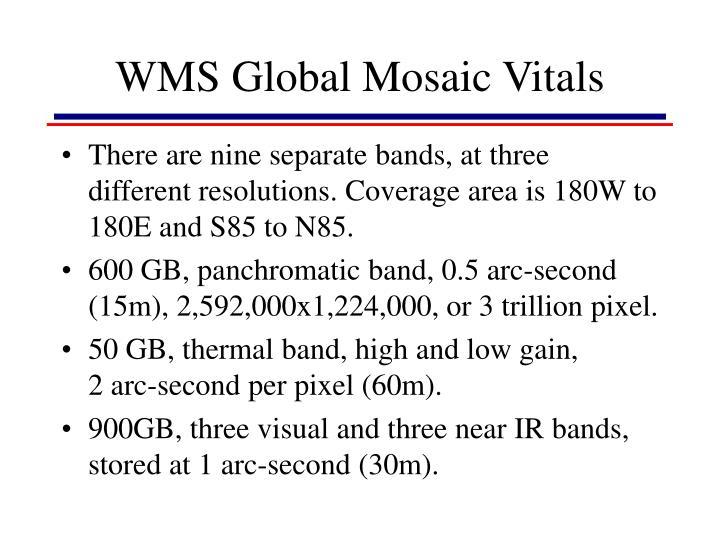 WMS Global Mosaic Vitals