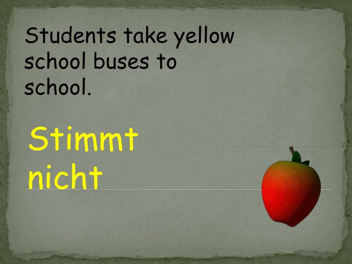 Students take yellow school buses to school.