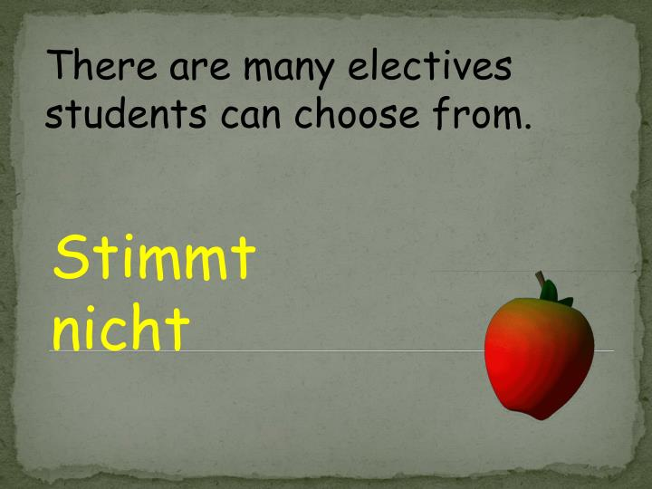 There are many electives students can choose from.