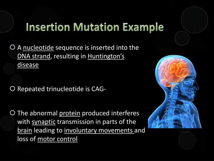 Insertion Mutation Example