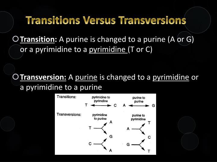 Transitions Versus