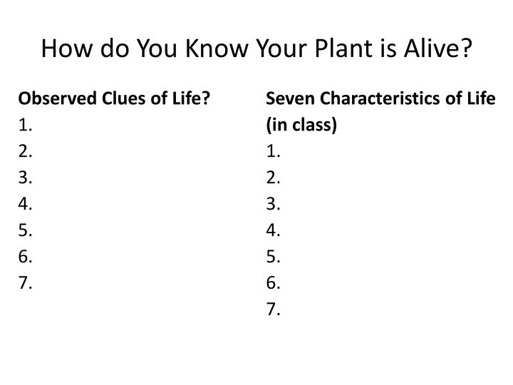 how do you know your plant is alive n.