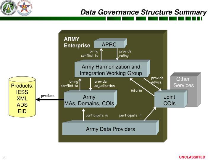 Data Governance Structure Summary