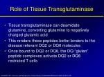 role of tissue transglutaminase