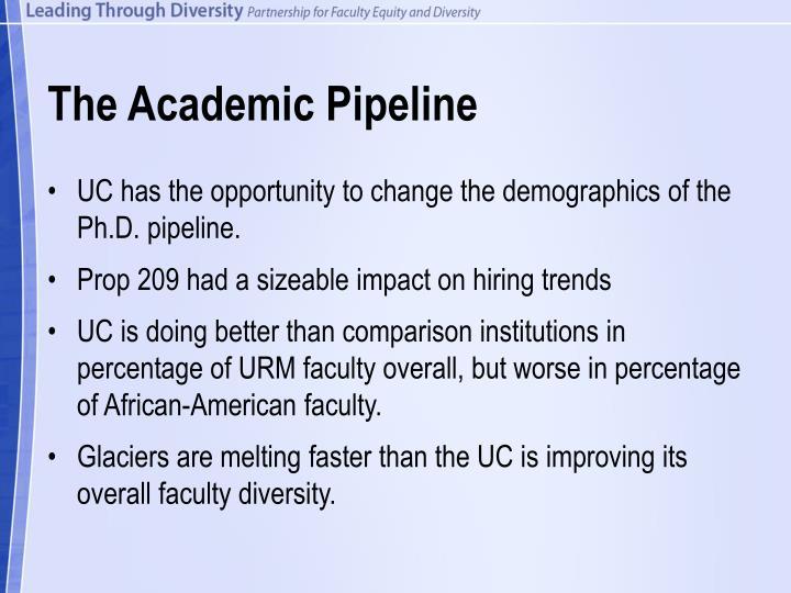The academic pipeline