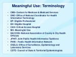 meaningful use terminology