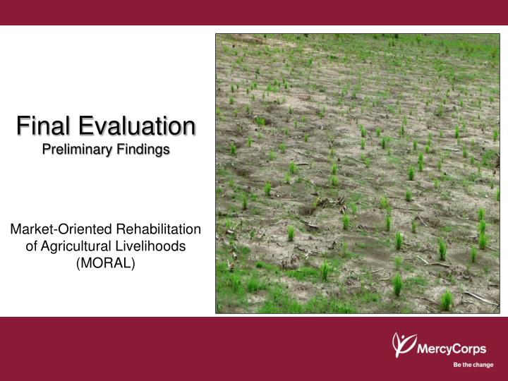 final evaluation preliminary findings n.