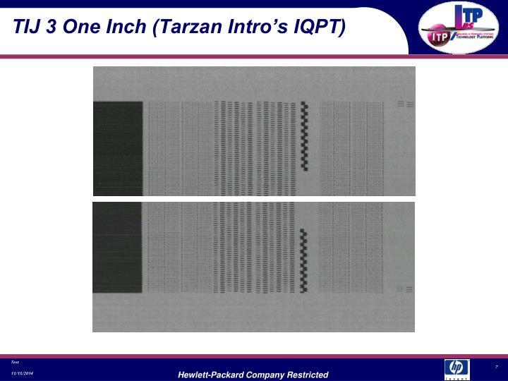 TIJ 3 One Inch (Tarzan Intro's IQPT)