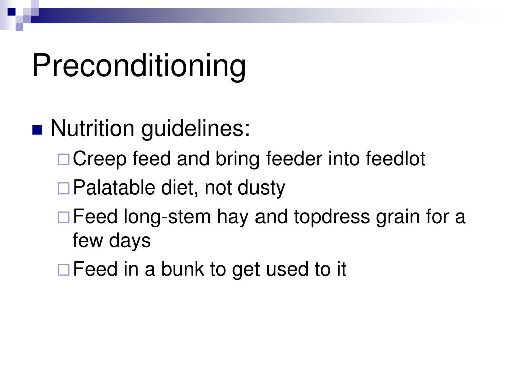PPT - Beef Cattle Nutrition PowerPoint Presentation - ID:6649234