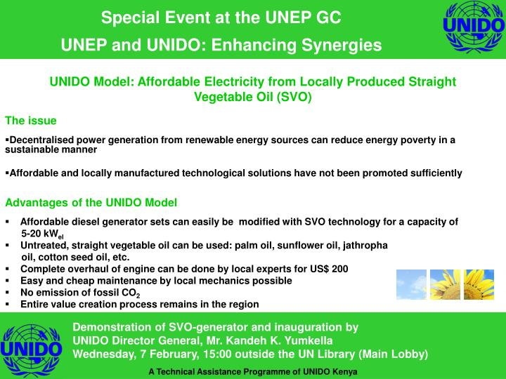 PPT - Special Event at the UNEP GC UNEP and UNIDO: Enhancing
