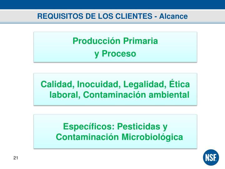 REQUISITOS DE LOS CLIENTES - Alcance