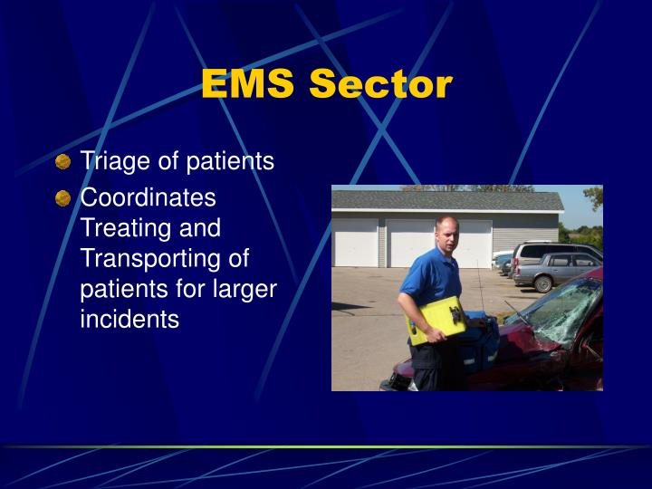EMS Sector