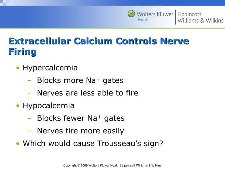 Extracellular Calcium Controls Nerve Firing