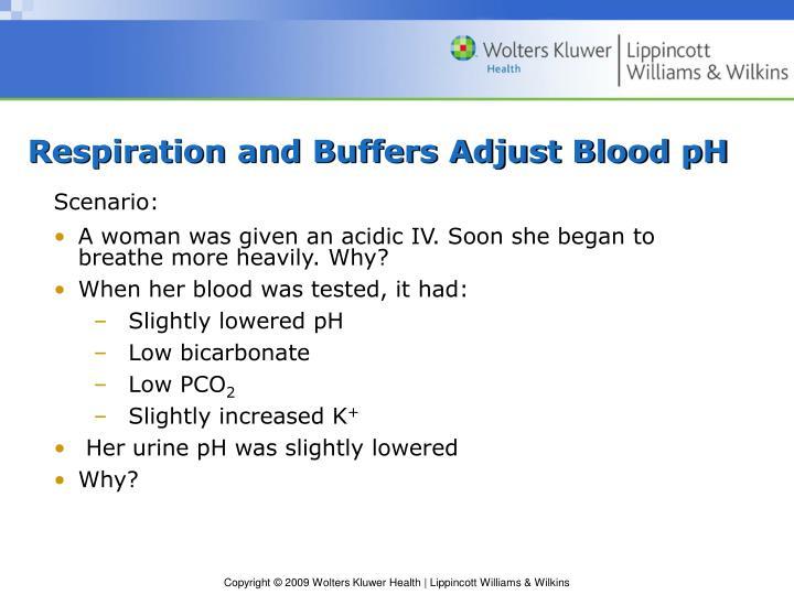 Respiration and Buffers Adjust Blood pH