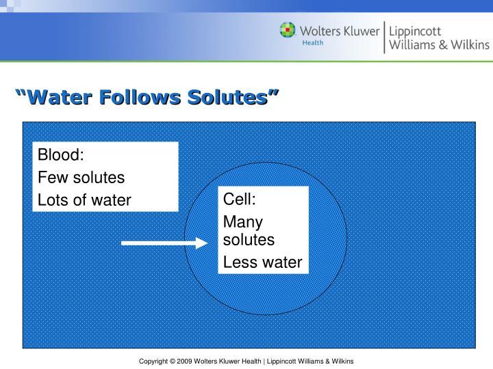 """Water Follows Solutes"""