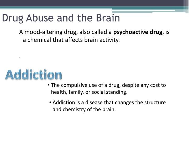 Drug abuse and the brain