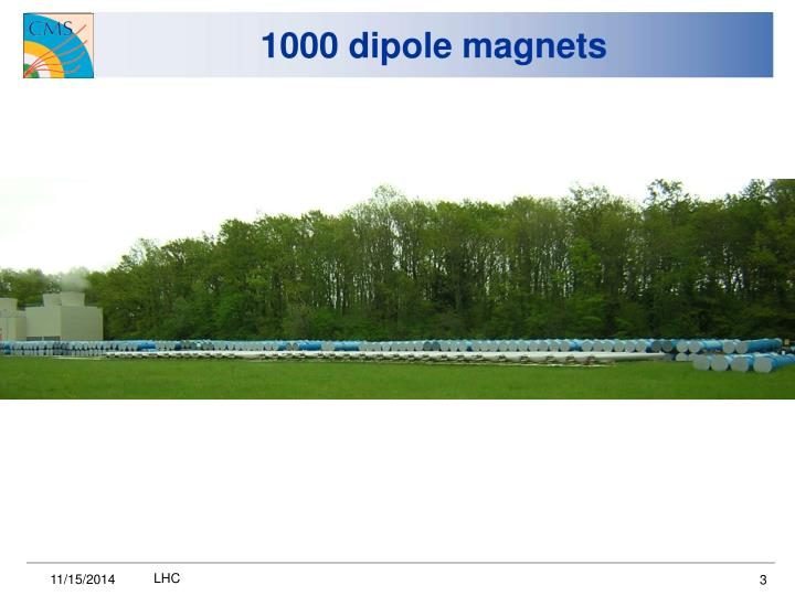 1000 dipole magnets