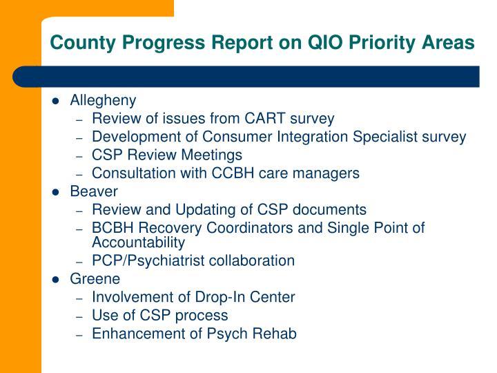 County Progress Report on QIO Priority Areas