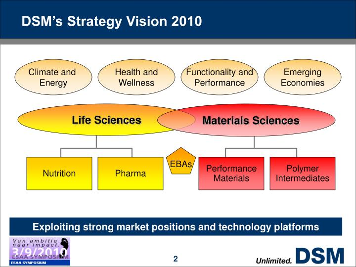 Dsm s strategy vision 2010