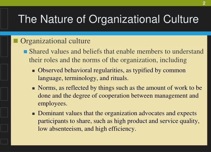 The nature of organizational culture