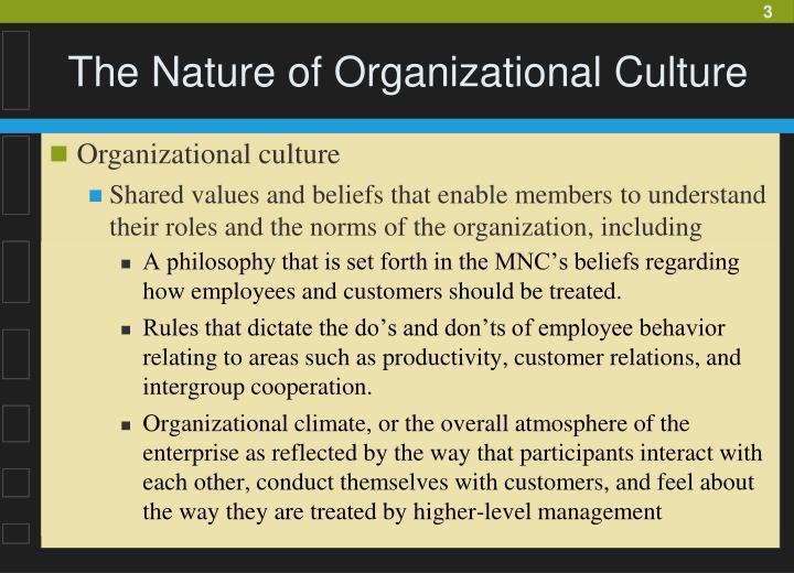 The nature of organizational culture1