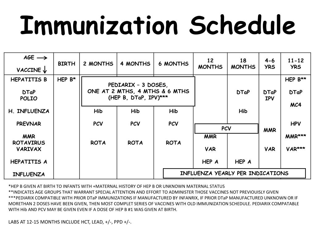 ppt - immunization schedule powerpoint presentation - id:6653532