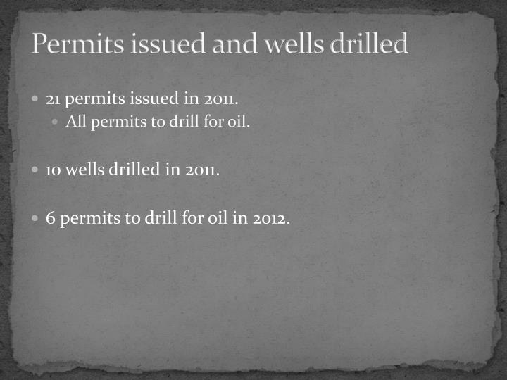 Permits issued and wells drilled
