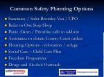 common safety planning options