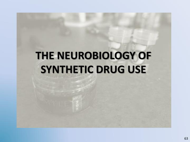 the Neurobiology of synthetic drug USE