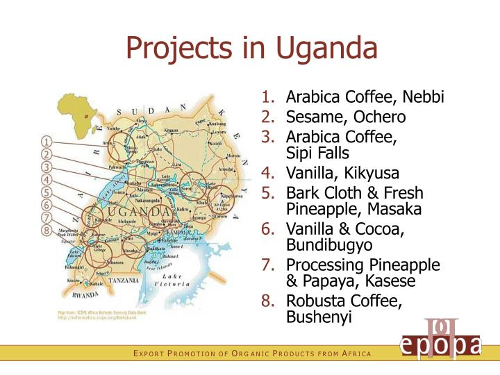Projects in Uganda