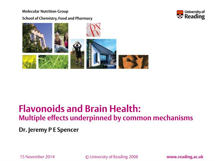 Flavonoids and brain health multiple effects underpinned by common mechanisms