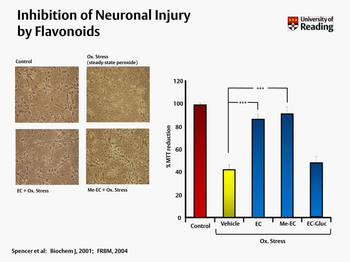 Inhibition of Neuronal Injury