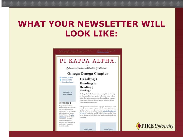 What your newsletter will look like