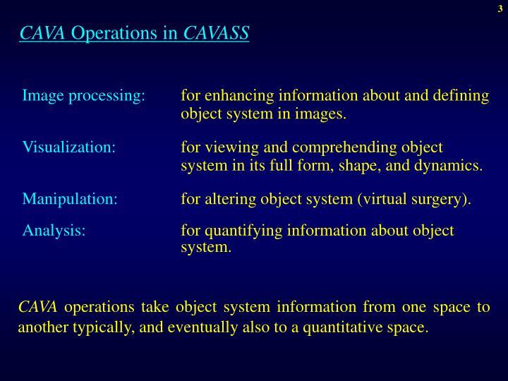 Cava operations in cavass