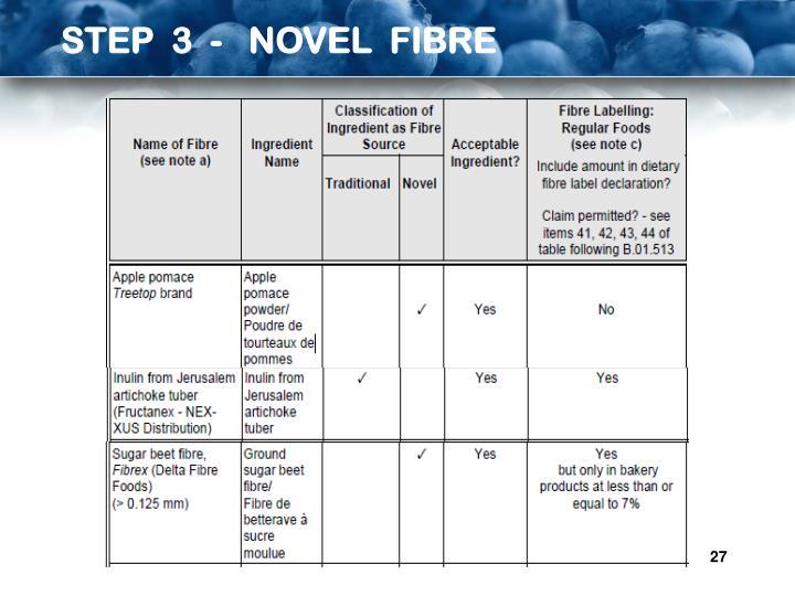 STEP  3  -   NOVEL  FIBRE