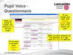 pupil voice questionnaire