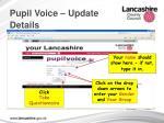 pupil voice update details